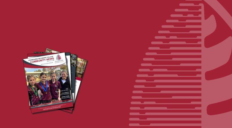 Community News  - School Newsletter Issue 4